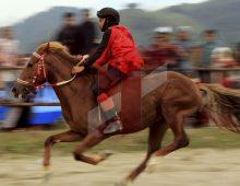 Pacu Kuda Tradisional