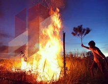Kebakaran Hutan Riau
