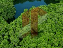 Telaga Mentawai