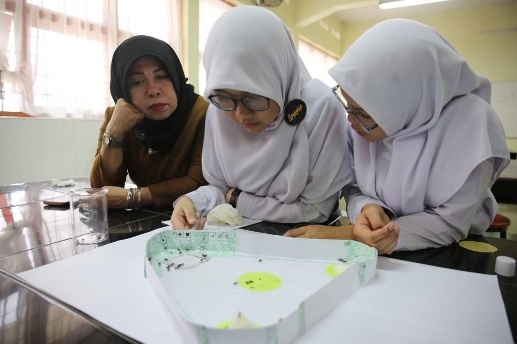 "Dua siswi Sma Negeri 1 Medan,Menangkan perlombaan penelitian ""Indonesia Fun Science Award"" (8/4/19). Teliti tentang kesetiaan semut,dua siswi ini raih hadiah ke German.(IP/Ahmad Ridwan Nasution)"
