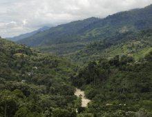 Paru-Paru Terakhir (Taman Nasional Gunung Leuser)